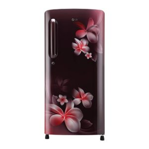 LG 190 L 4 Star Inverter Direct-Cool Single Door Refrigerator (GL-B201ASPY, Scarlet Plumeria)