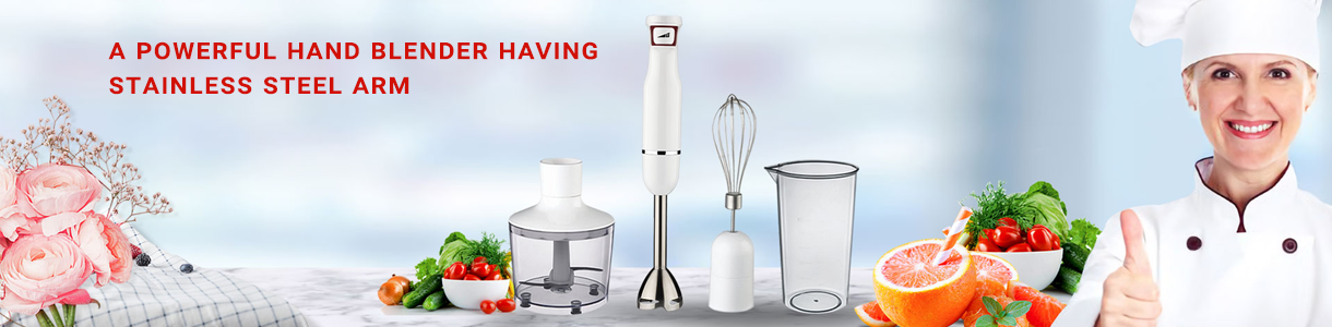 The Best Hand Blender in India