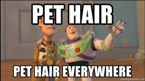 Removes Pet Hair & Dander from the Air